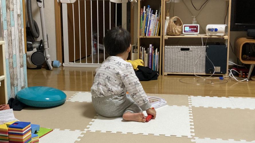 2020.12.27(Sun) 猫の動画に夢中な息子