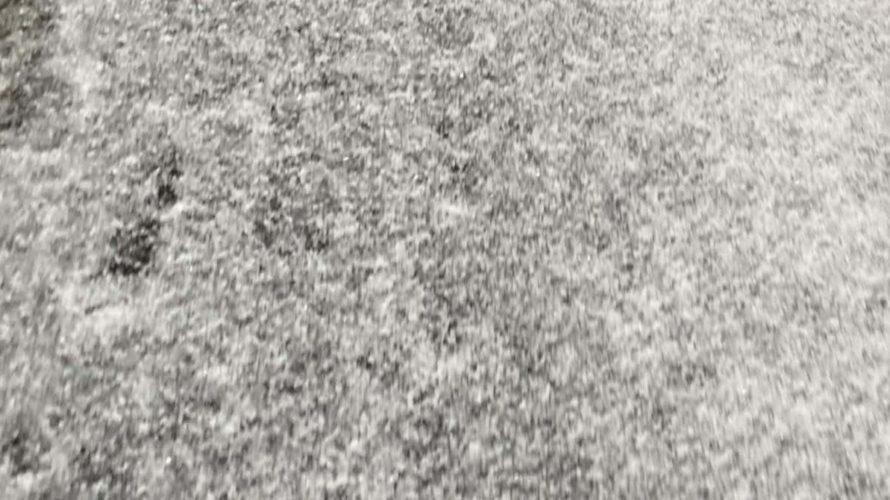 2020.11.09(Mon) 雪をザクザク踏む息子