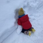 2021.03.04(Wed) ふかふかの雪を楽しむ息子