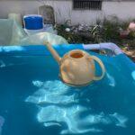 2021.08.07(Sat) プールを楽しむ息子